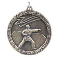 1 3/4 inch Karate Shooting Star Medal