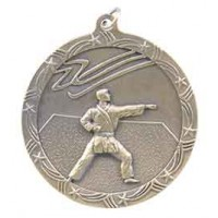 2 1/2 inch Karate Shooting Star Medal