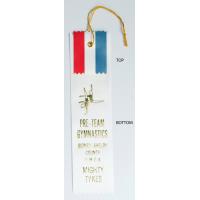 #5 Custom 2 x 8 - 2 Layer Award Ribbon