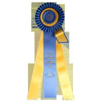 #110S - Custom Award Rosette