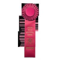 #116S Custom Award Rosette