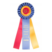 3 Streamer Award Rosettes