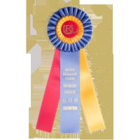 3 Streamer Award Rosettes