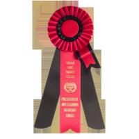 #500 - Custom Award Rosette
