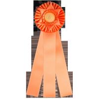 #650 - Custom Award Rosette