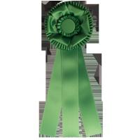 #700 - Custom Award Rosette