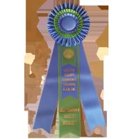 #817 - Custom Award Rosette