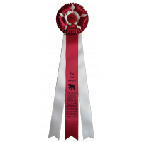 "#901 - ""The Bud"" Custom Award Rosette"