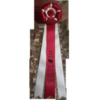 """#901 - """"The Bud"""" Custom Award Rosette"""