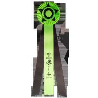 #910 - Custom Award Rosette
