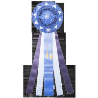 #BIGB- Custom Award Rosette